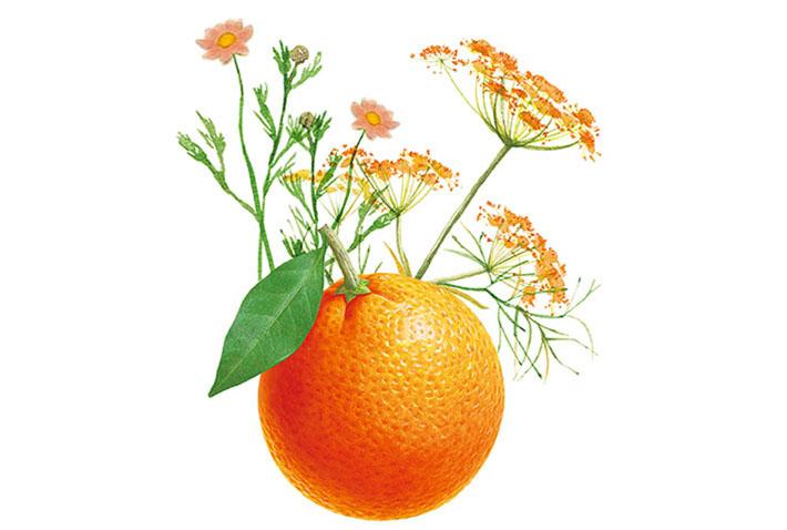 Sweetie Citrus タスカ アロマネイルオイル